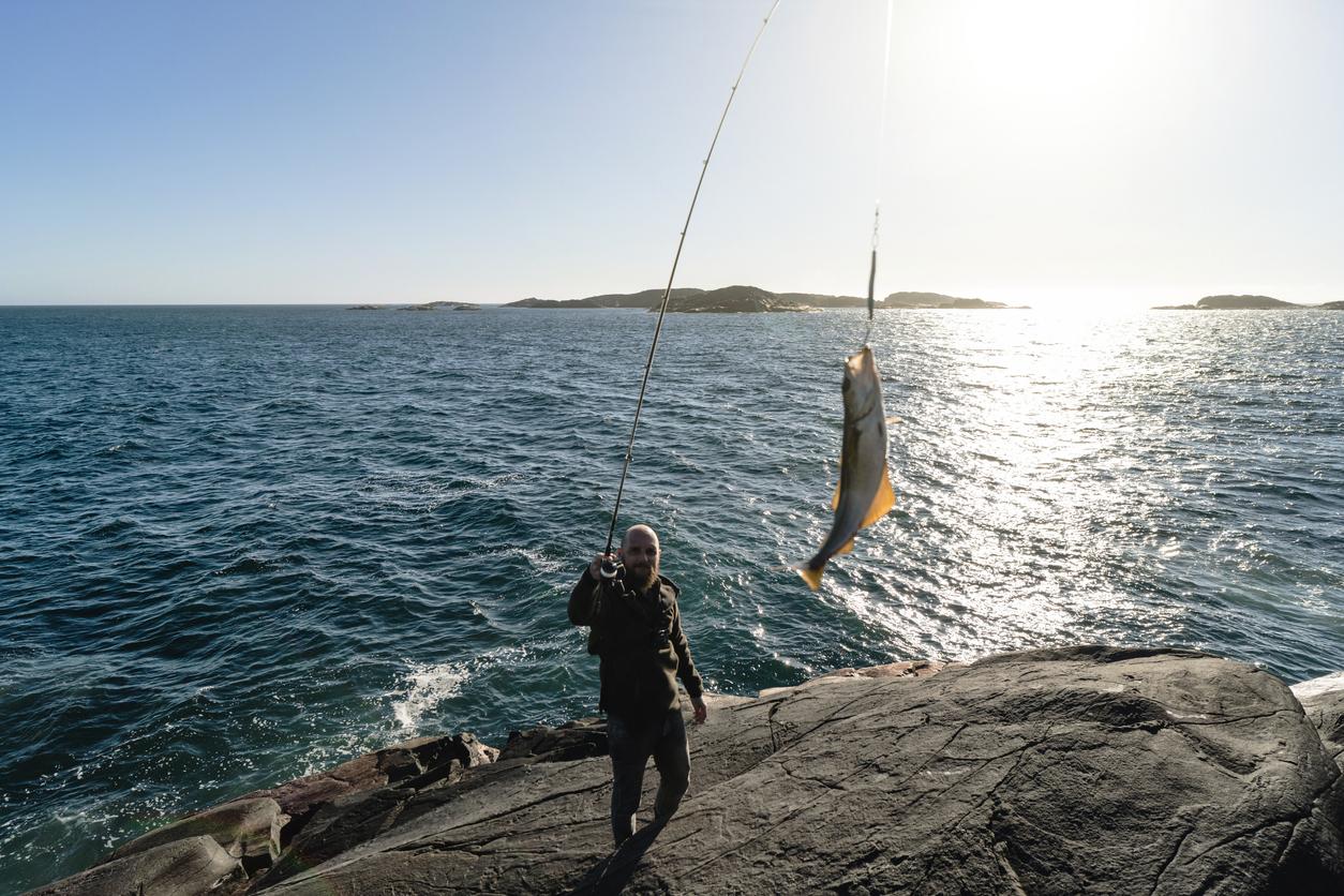 Ta reda på vilka fiskar du får fånga